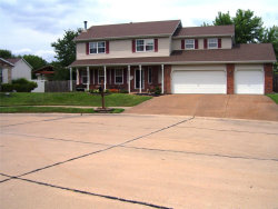 Photo of 17 Wild Horse Court, Troy, IL 62294-2090 (MLS # 19059698)