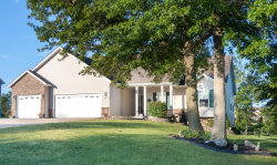 Photo of 436 Bluff Drive, Troy, MO 63379-2043 (MLS # 19060335)