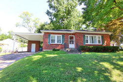 Photo of 1710 Stoddard Street, Cape Girardeau, MO 63701 (MLS # 19060870)