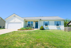 Photo of 211 Glen Forest Drive, Troy, MO 63379 (MLS # 19061002)