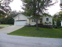 Photo of 9845 West Vista Drive, Hillsboro, MO 63050-3118 (MLS # 19062115)