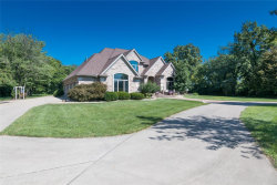Photo of 614 Lower Marine Road, Troy, IL 62294 (MLS # 19066166)