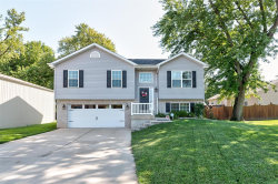 Photo of 209 West Division Street, Maryville, IL 62062-6831 (MLS # 19068049)