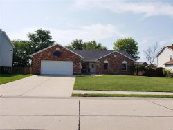 Photo of 8038 Austin Dr, Troy, IL 62294 (MLS # 19068166)