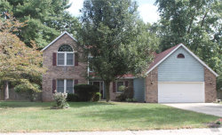 Photo of 16 Sequoia Drive, Troy, IL 62294-3226 (MLS # 19071652)
