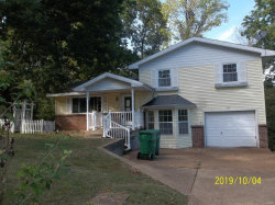Photo of 5181 Jimmy Drive, Arnold, MO 63010-3621 (MLS # 19075375)
