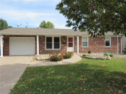 Photo of 3220 Erin, Granite City, IL 62040-5138 (MLS # 19076576)