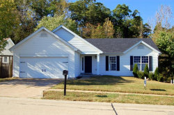 Photo of 1033 Big Sky Drive, Fenton, MO 63026-5676 (MLS # 19076754)