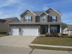 Photo of 313 Amber Bluff, Imperial, MO 63052 (MLS # 19078000)