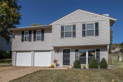 Photo of 3845 Red Bud Drive, Imperial, MO 63052-1182 (MLS # 19078219)