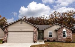 Photo of 10326 Hawks Nest Drive, Hillsboro, MO 63050-3437 (MLS # 19082513)