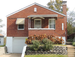 Photo of 1516 Cutter Avenue, St Louis, MO 63139-3608 (MLS # 19083446)