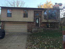 Photo of 3032 Northern Lights Drive, Arnold, MO 63010-3873 (MLS # 19083569)