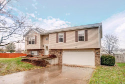 Photo of 18 Hollowood Ct, Troy, IL 62294-3604 (MLS # 19084027)