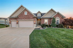 Photo of 651 Alsace Drive, Pevely, MO 63070 (MLS # 19084104)