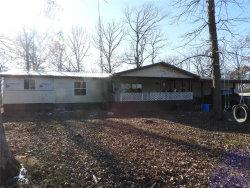 Photo of 22037 Chestnut Ridge Road, Farmington, MO 63640-8752 (MLS # 19084647)