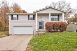 Photo of 515 Dogwood Drive, Troy, IL 62294-1008 (MLS # 19085228)