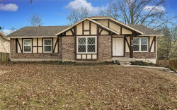Photo of 214 Birchleaf Drive, St Peters, MO 63376-7038 (MLS # 19086487)