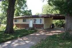 Photo of 9007 Loganberry Lane, St Louis, MO 63121-3719 (MLS # 19087495)