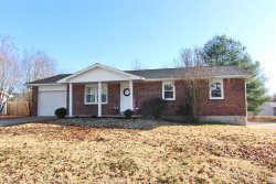 Photo of 212 Greenbrier Drive, Cape Girardeau, MO 63701-9564 (MLS # 19087857)