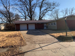 Photo of 8312 Pepperidge Drive, St Louis, MO 63134-1418 (MLS # 19088557)