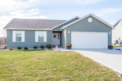 Photo of 220 Bayview Drive, Troy, MO 63379 (MLS # 19090642)