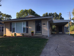 Photo of 211 Briarwood Drive, Granite City, IL 62040-2164 (MLS # 20000869)