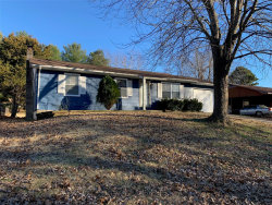 Photo of 202 South Forester Drive, Cape Girardeau, MO 63701-8529 (MLS # 20000959)