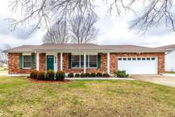 Photo of 129 Bluffview Dr, Troy, MO 63379-2035 (MLS # 20002973)