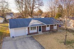 Photo of 1110 Helvetia Drive, Highland, IL 62249-1735 (MLS # 20003101)