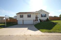 Photo of 111 Village Circle Drive, Winfield, MO 63389-2054 (MLS # 20003857)
