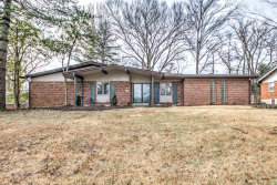 Photo of 769 Country Manor, St Louis, MO 63141-6607 (MLS # 20004205)