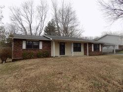 Photo of 116 Archer Lane, Ironton, MO 63650 (MLS # 20005226)