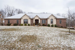Photo of 485 Tyler Drive, Troy, IL 62294-2855 (MLS # 20005280)
