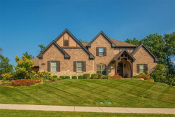 Photo of 111 North Mosley Road, Creve Coeur, MO 63141-7624 (MLS # 20006092)