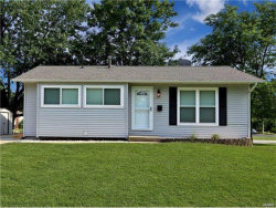 Photo of 201 Camelot, Troy, IL 62294 (MLS # 20007383)