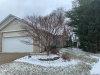 Photo of 1208 University Drive, Edwardsville, IL 62025 (MLS # 20007554)