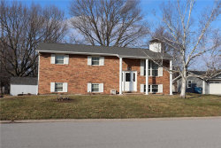 Photo of 908 Long Branch Road, Troy, IL 62294-3132 (MLS # 20008078)