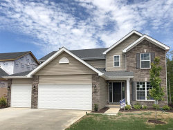 Photo of 4895 Sierra View Place, Imperial, MO 63052 (MLS # 20009833)
