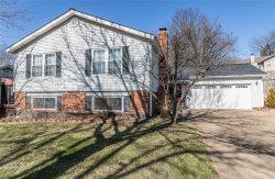 Photo of 6517 Suson Woods Drive, St Louis, MO 63128-4520 (MLS # 20010006)