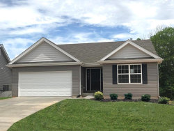 Photo of 3126 Willow Point Drive, Imperial, MO 63052 (MLS # 20010264)