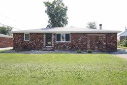 Photo of 112 Nelson Drive, Bethalto, IL 62010-1406 (MLS # 20010305)