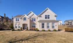 Photo of 425 Willow Weald Path, Chesterfield, MO 63005-1367 (MLS # 20011023)