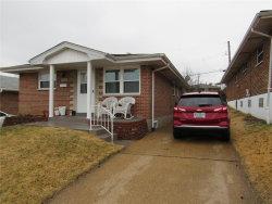 Photo of 4016 Steffens Avenue, St Louis, MO 63116-3411 (MLS # 20012057)