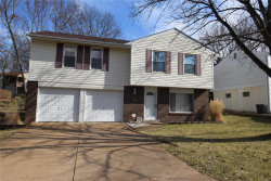 Photo of 3156 Pinebrook Drive, Arnold, MO 63010-3714 (MLS # 20012251)