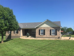 Photo of 6707 Bridle Trail Lane, High Ridge, MO 63049-2061 (MLS # 20014790)