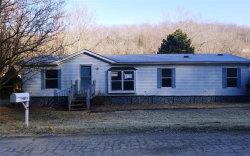 Photo of 4813 Woodridge Drive, House Springs, MO 63051-3109 (MLS # 20016215)