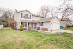 Photo of 533 Whippoorwill Street, Troy, IL 62294 (MLS # 20019025)