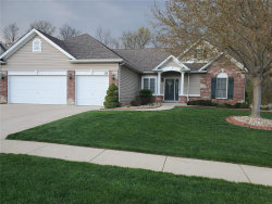 Photo of 129 Timber Trace Xing, Wentzville, MO 63385-2124 (MLS # 20022584)
