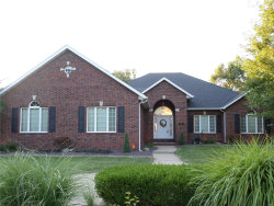 Photo of 1 Primrose Place, Edwardsville, IL 62025-3125 (MLS # 20023097)